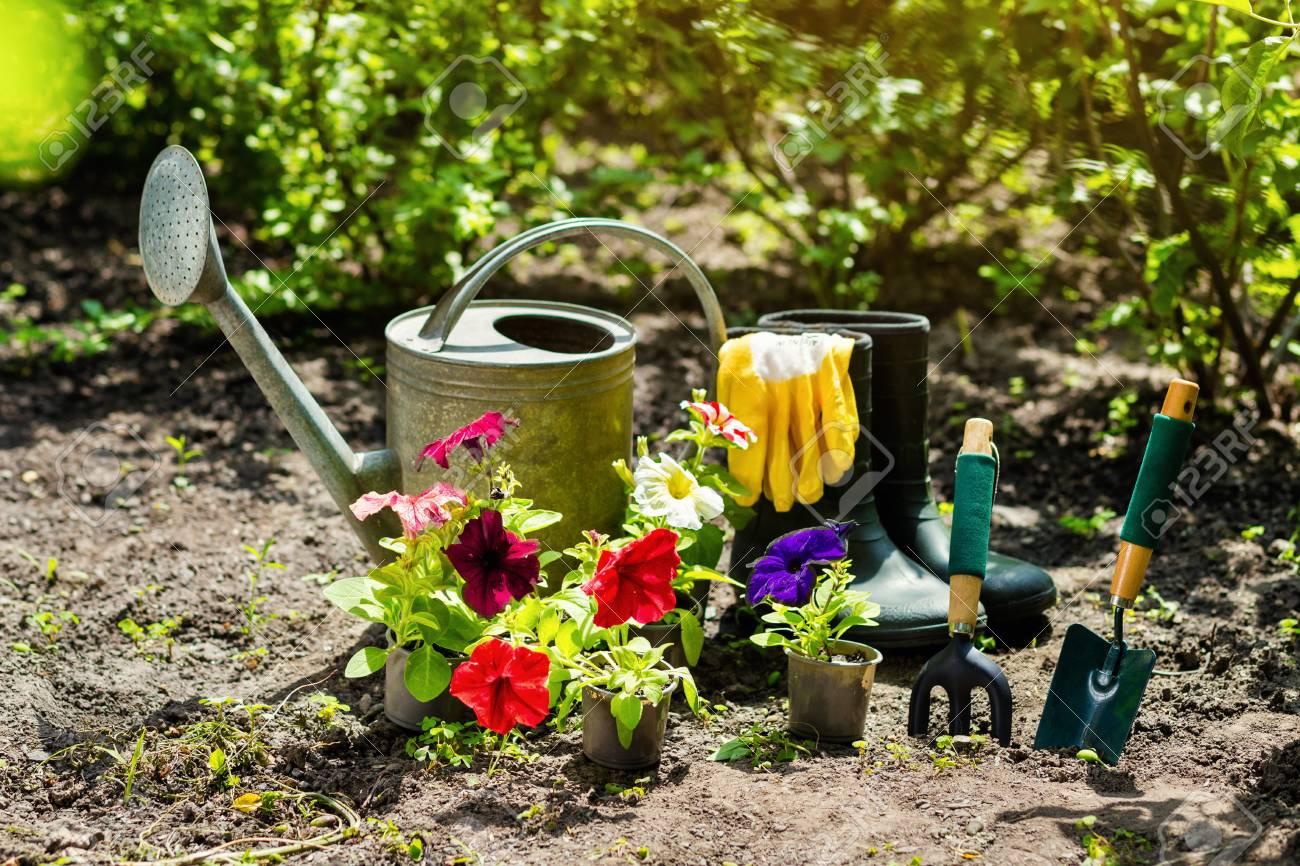 Gartengeräte Und Blumen Im Garten Gießkanne Gummistiefel Blumen