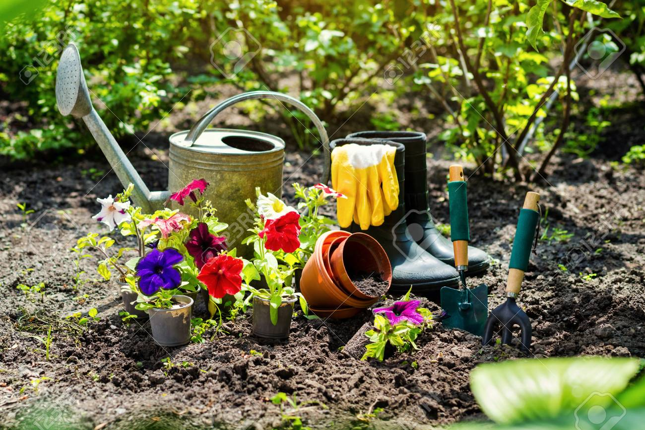 gardening tools and flowers in the garden watering can rubber boots flowers - Garden Watering Can