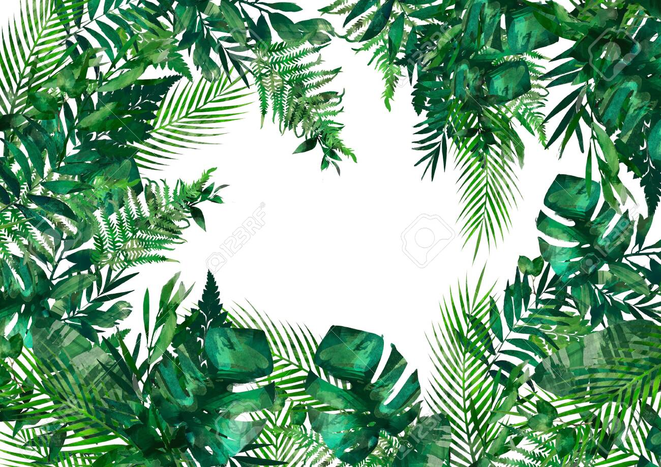 Tropical Leaves Frame Circle Frame Watercolor Illustration Stock Photo Picture And Royalty Free Image Image 120599517 Download premium image of colorful tropical frame design vector by hwangmangjoo about 1200126, card, greeting card, tropic and tropical 1200126. tropical leaves frame circle frame watercolor illustration