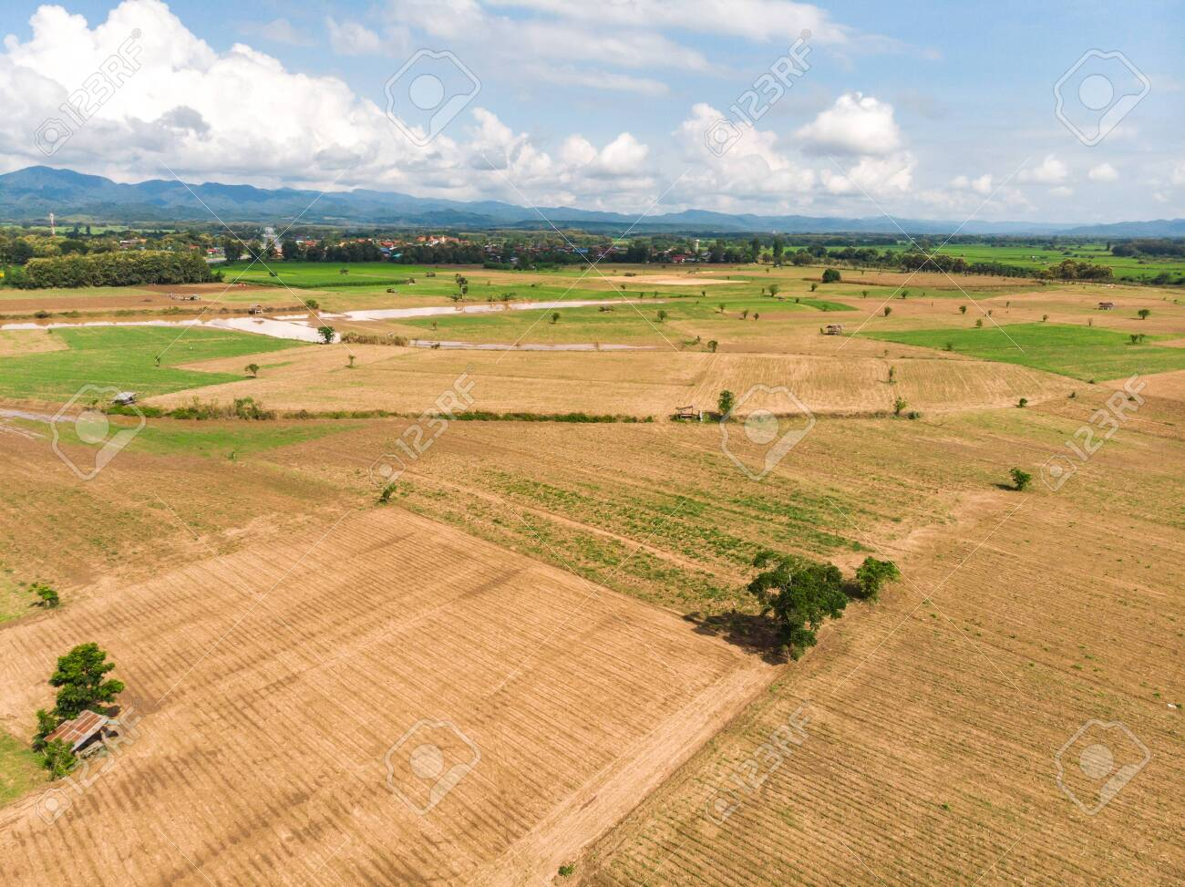 Empty crop field near rural village in Asian country - 144214470