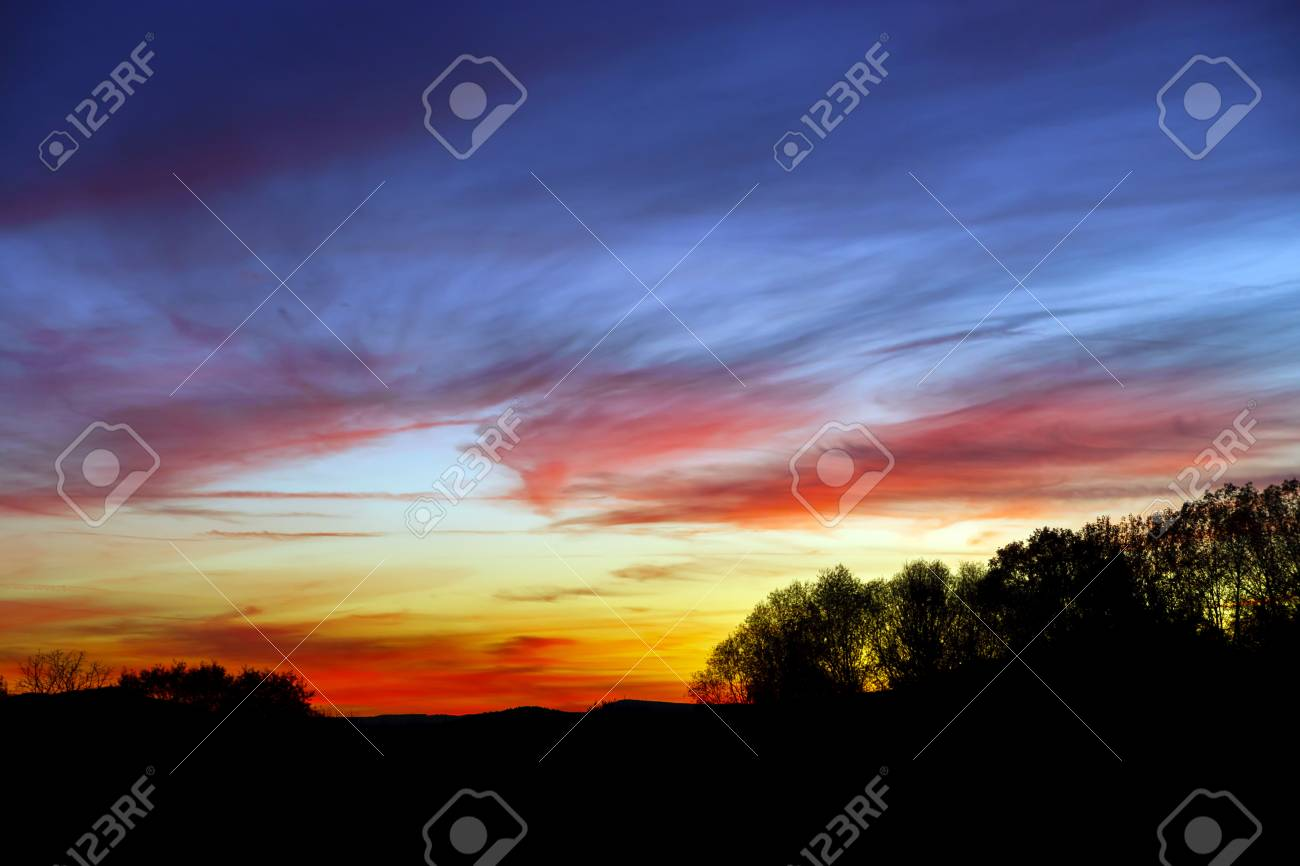abstract colorful sunset landscape with tree silhouette on front