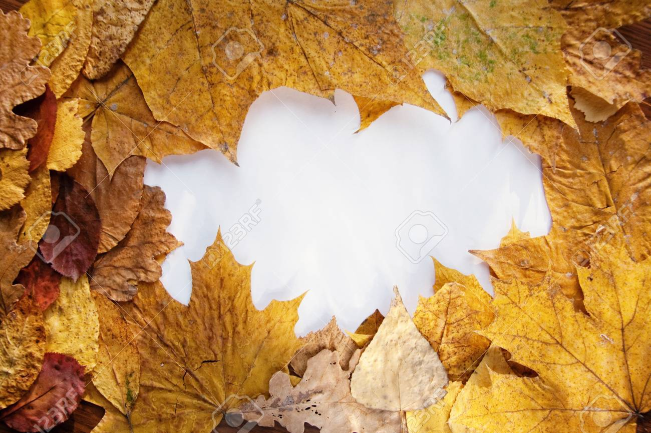 Frame from autumn leaves and place for text Stock Photo - 5772876