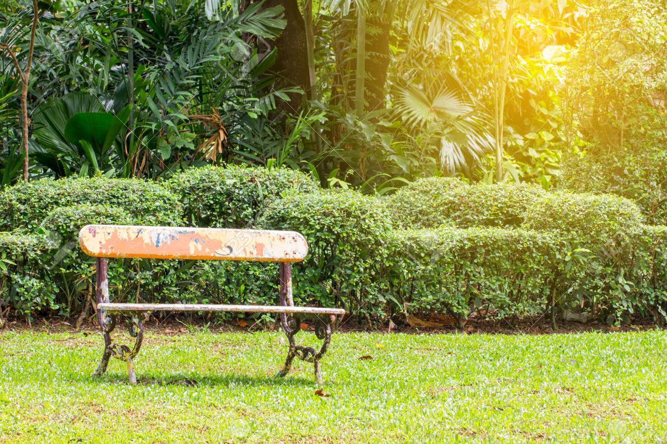 Remarkable Old Bench In The Garden Field With Tree Cjindustries Chair Design For Home Cjindustriesco
