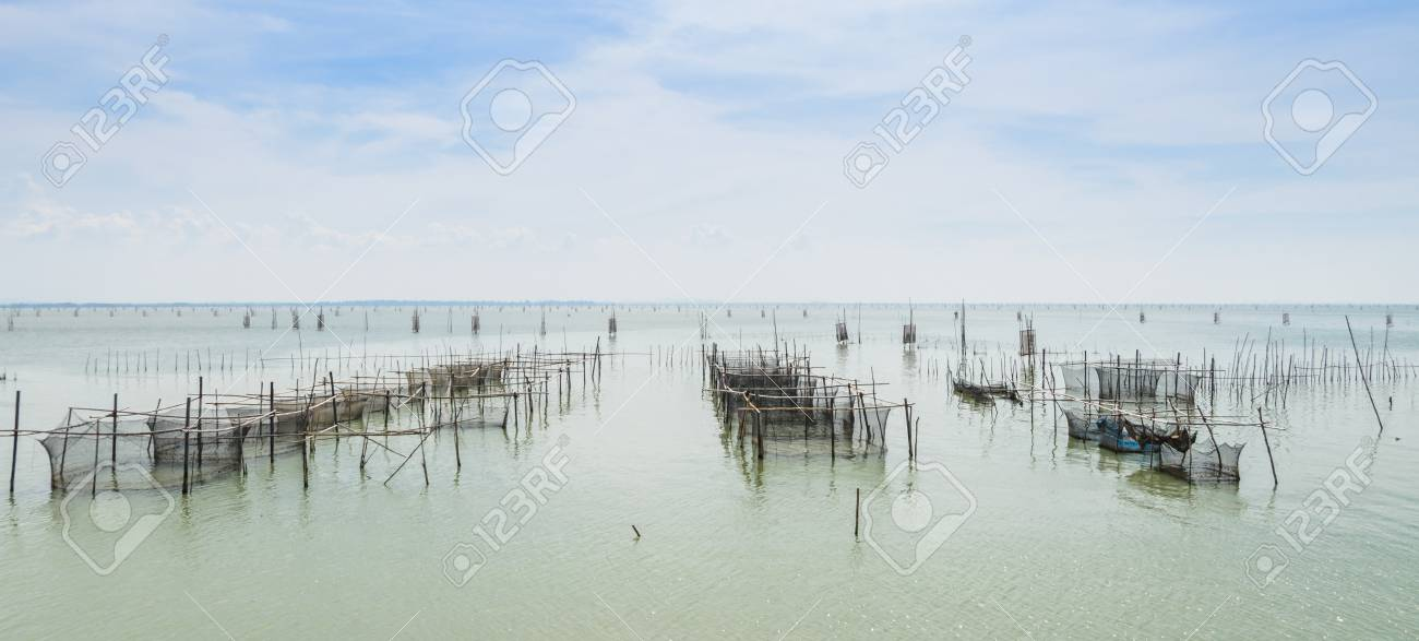Fish Farming In The Sea With Cages For Rearing Fish In Thailand ...
