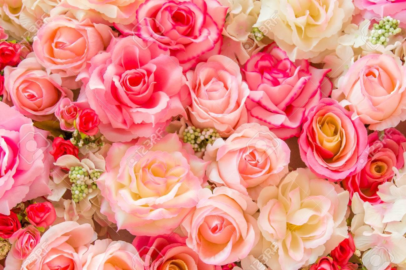 柔らかい色のバラ背景 の写真素材・画像素材 Image 44488224.