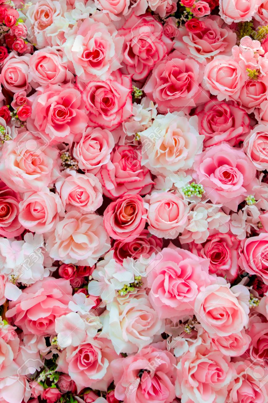 柔らかい色のバラ背景 の写真素材画像素材 Image 44489413