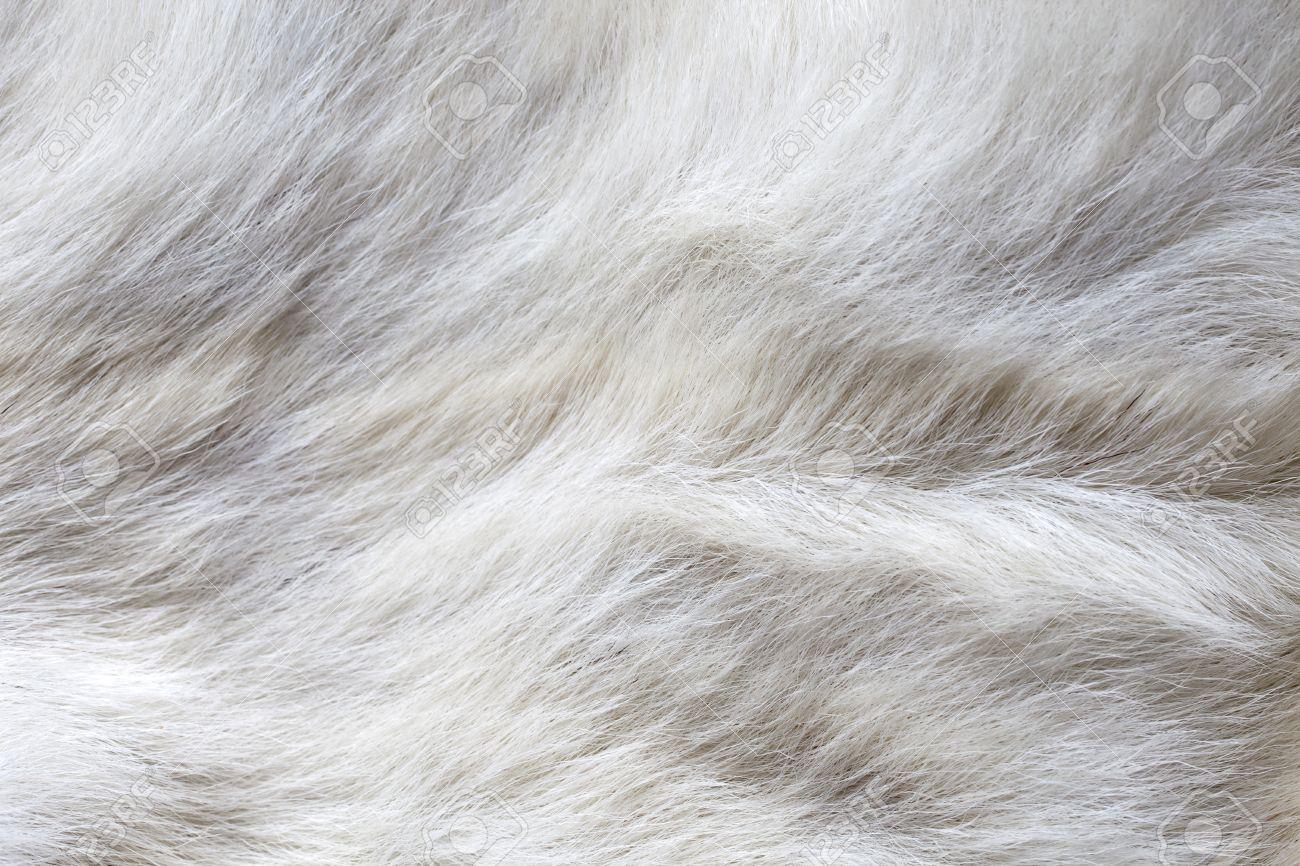 white carpet background. waves on a white fake cow fur carpet stock photo - 17603274 background