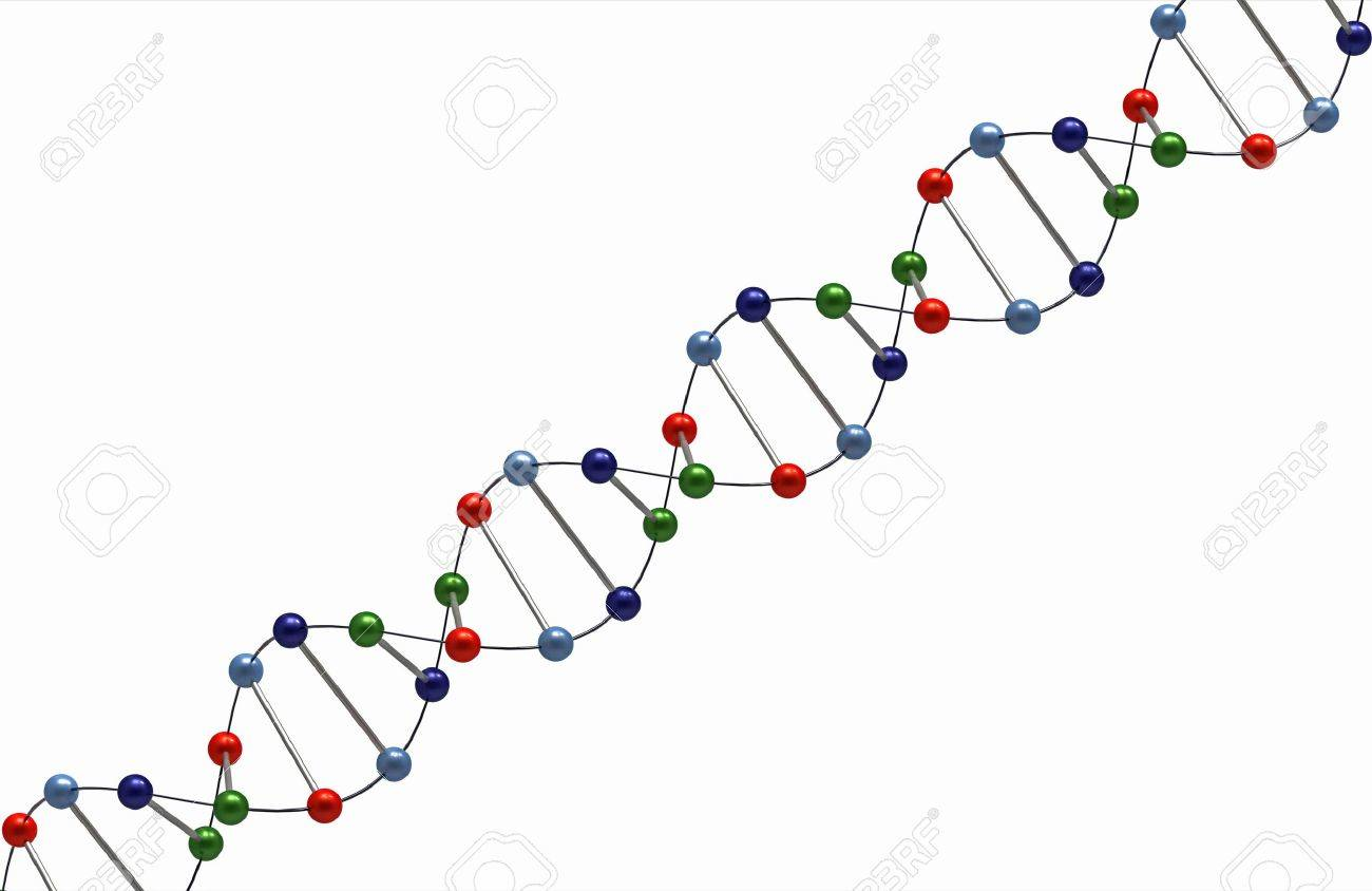 Render of DNA isolated on white background Stock Photo - 7790559