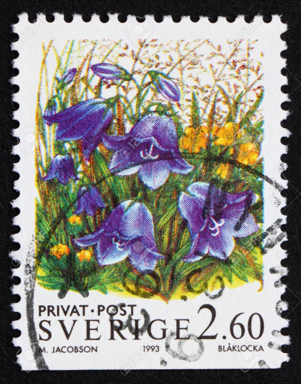 SWEDEN - CIRCA 1993: a stamp printed in the Sweden shows Bluebell Flowers, circa 1993 Stock Photo - 11926010