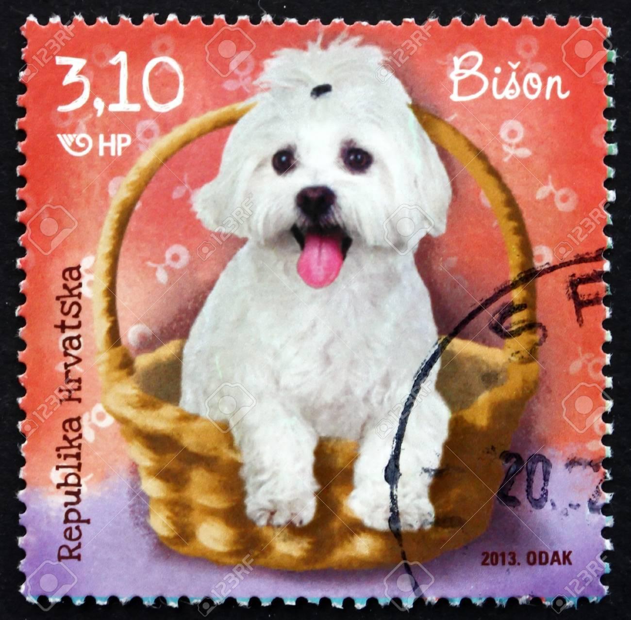 Croatia Circa 2013 A Stamp Printed In The Croatia Shows Bichon