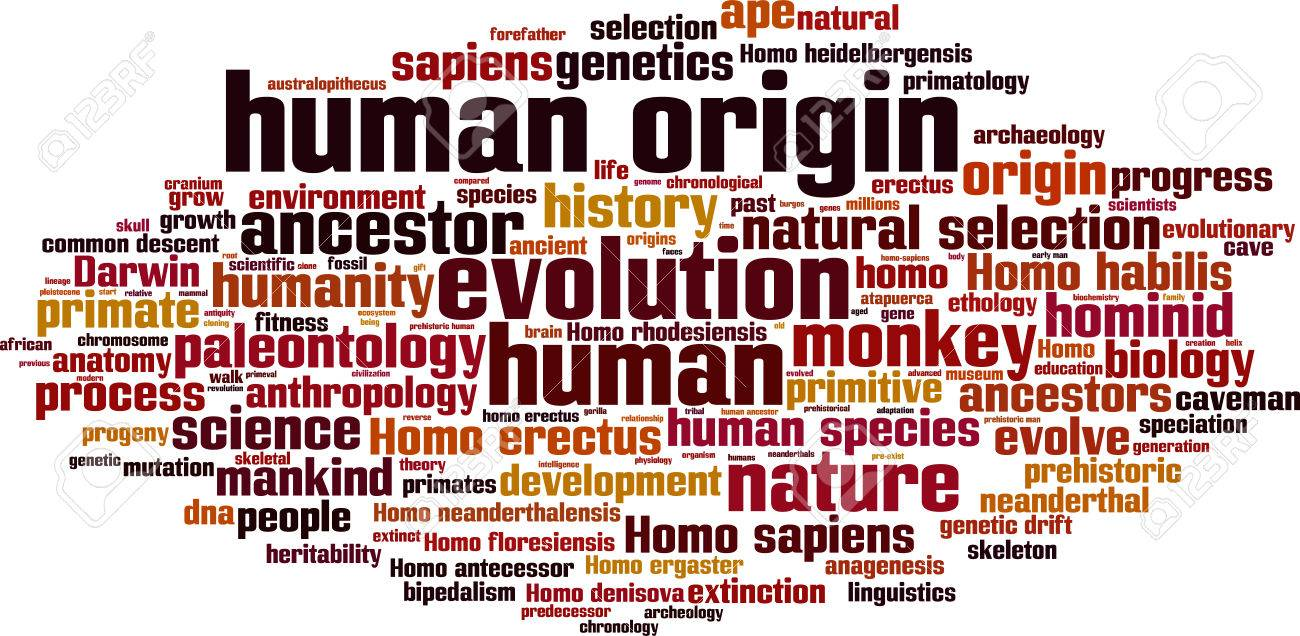 Human Origin Word Cloud Concept. Vector Illustration Stock Vector   36511860  Origin Of The Word Free