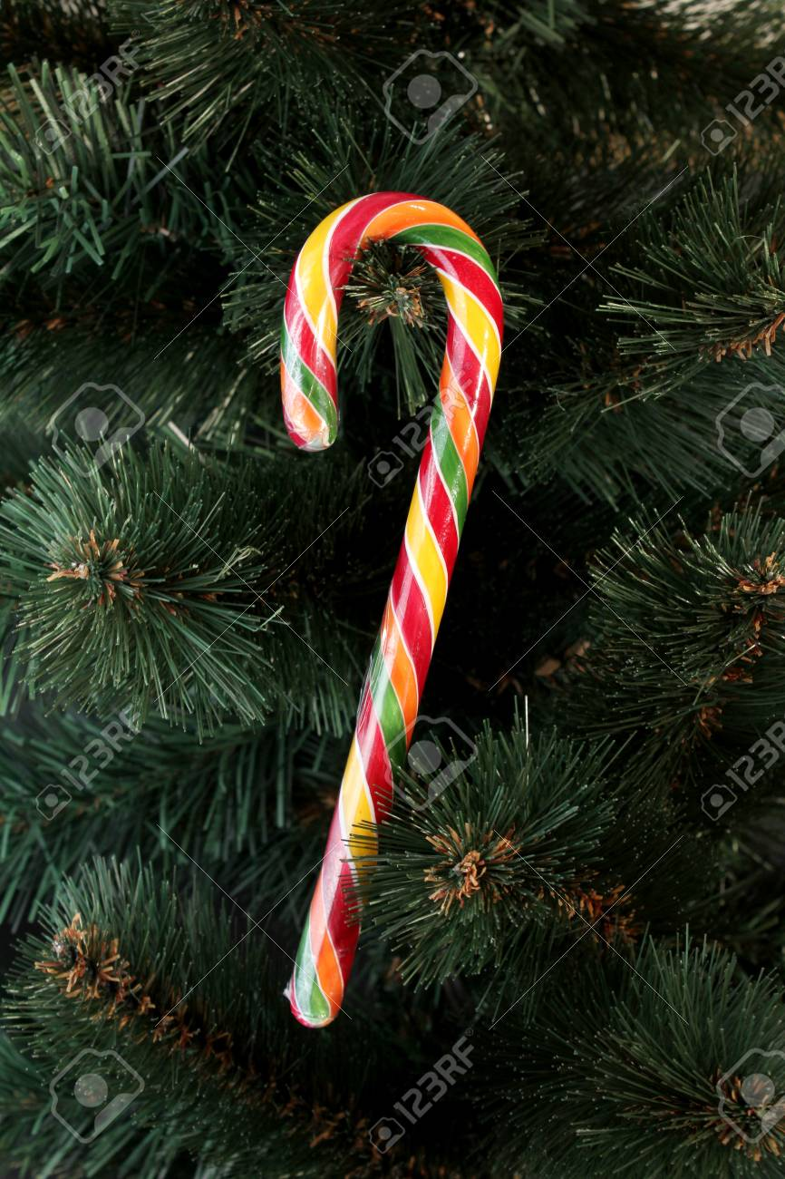 bright color striped candy cane decoration on christmas tree stock photo 50123513