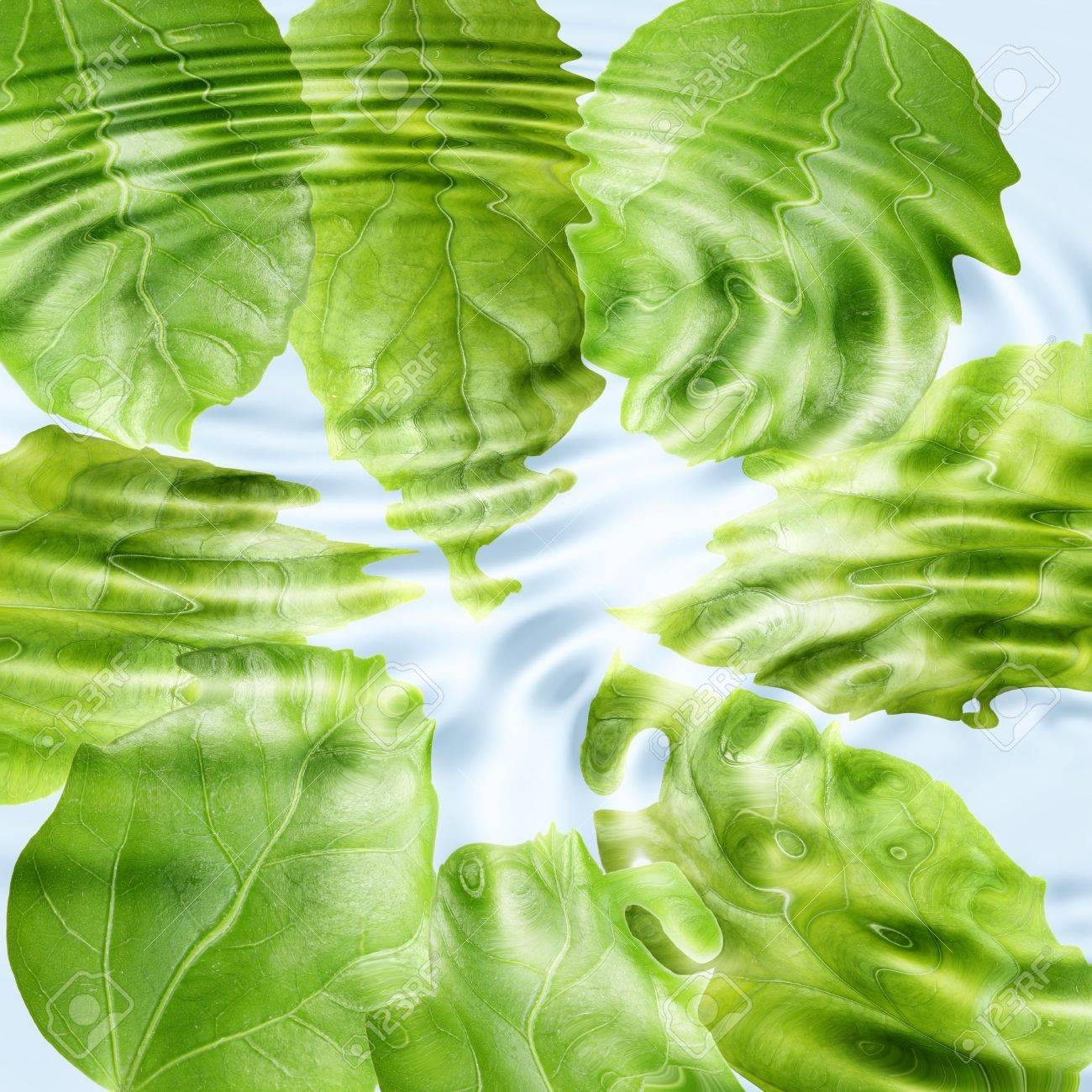 Abstract background of a green leaf under blue water. Close-up. Stock Photo - 7320298