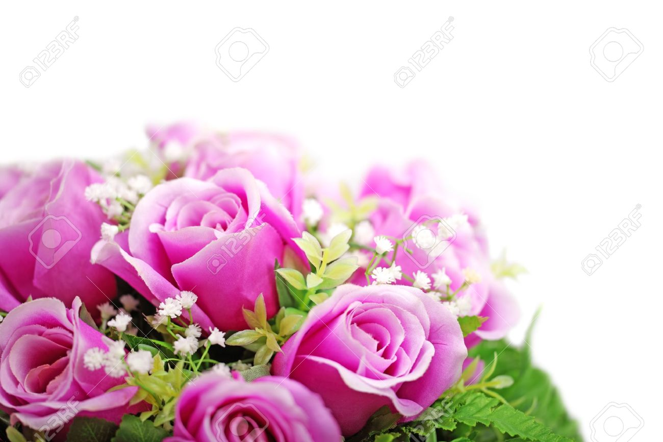 Purple roses bouquet isolated on white background. Stock Photo - 11826265