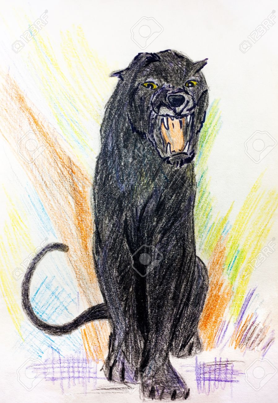 puma negro