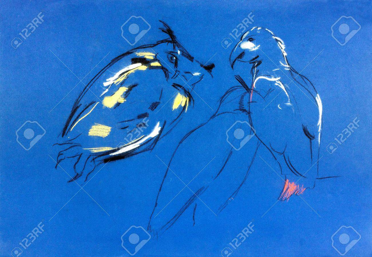 Original pastel and  hand drawn painting or  working  sketch of owl and falcon .Free composition of birds of prey. rapacious birds. Stock Photo - 17345110