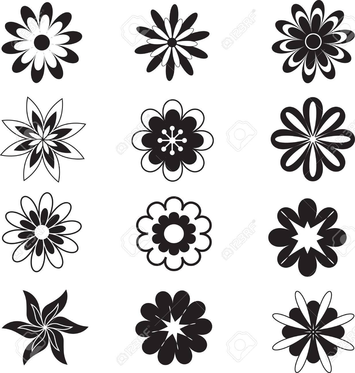 Isolated White And Black Flowers Flower Vectors Royalty Free