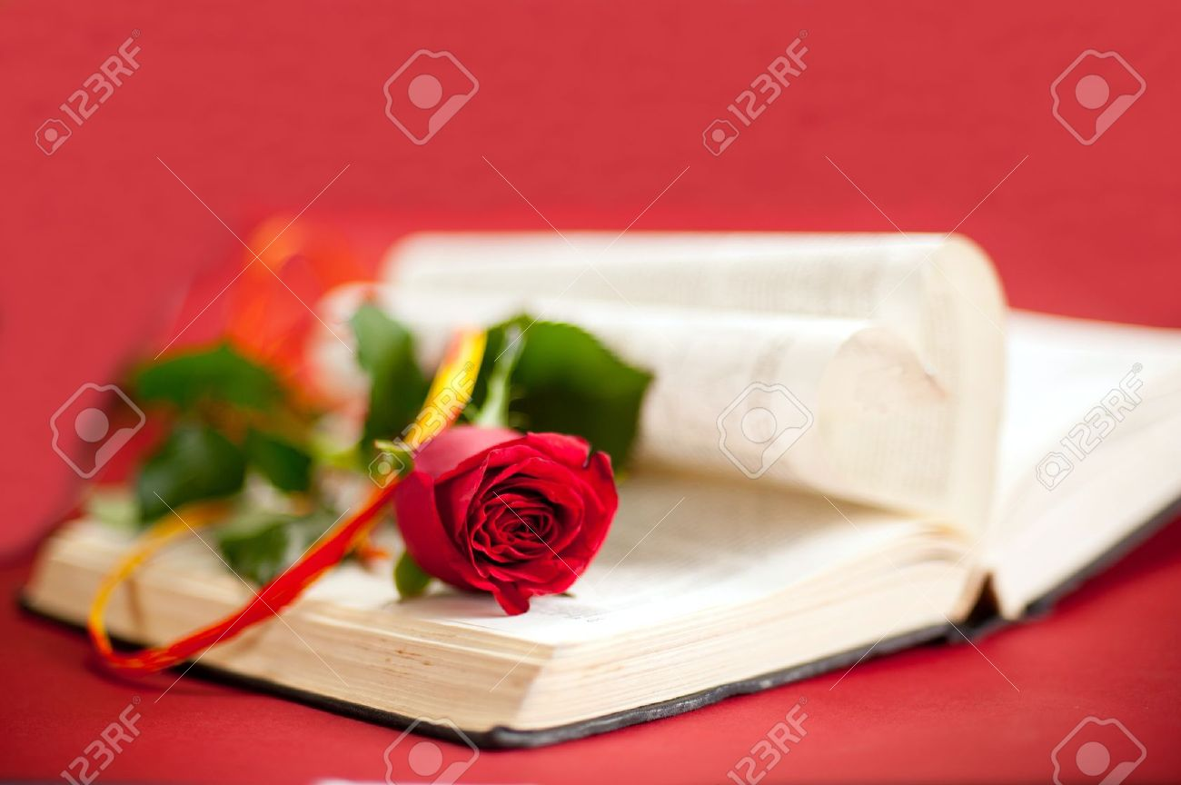 Love story book concept Red rose with hatband at opened book with heart shape pages Red background - 14030356