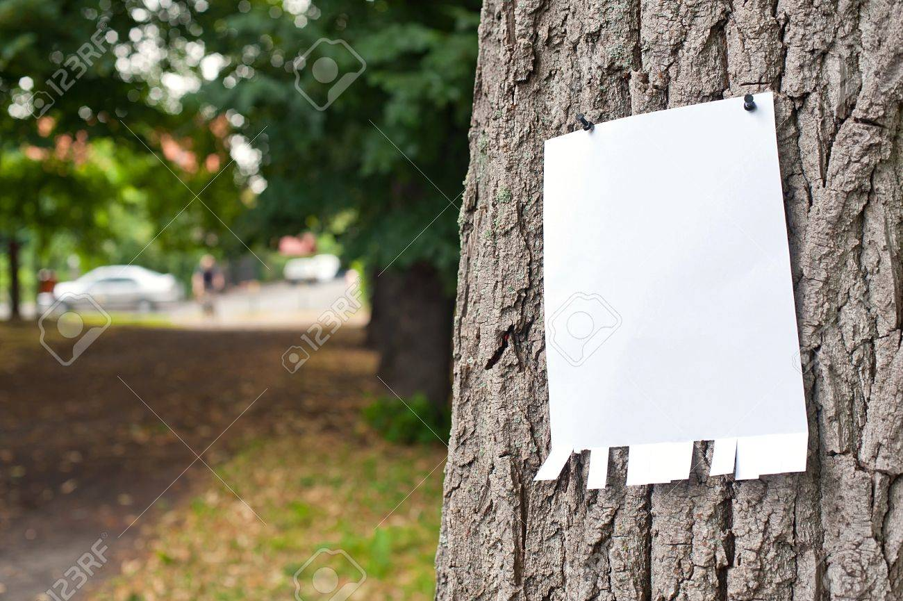Pinned blank vertical paper label on a tree - 21402565