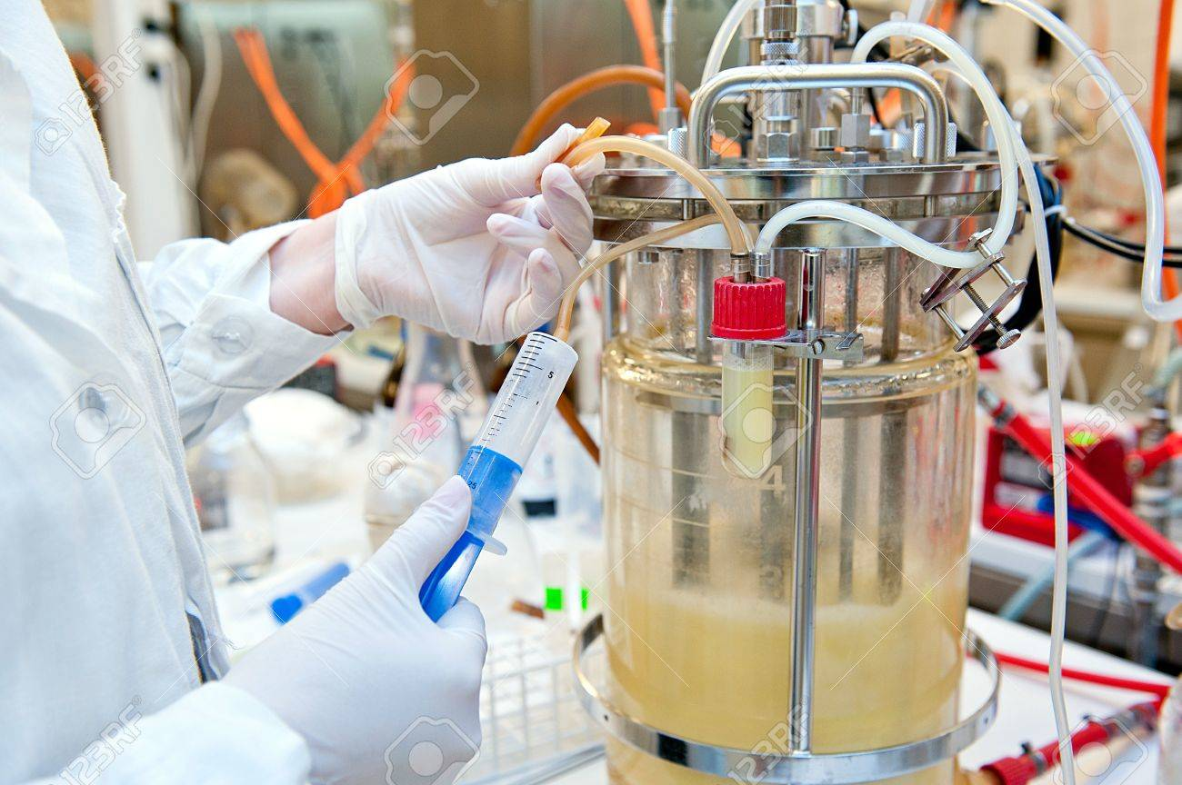 Taking sample from biotechnological bioreactor in microbiological laboratory - 21774854