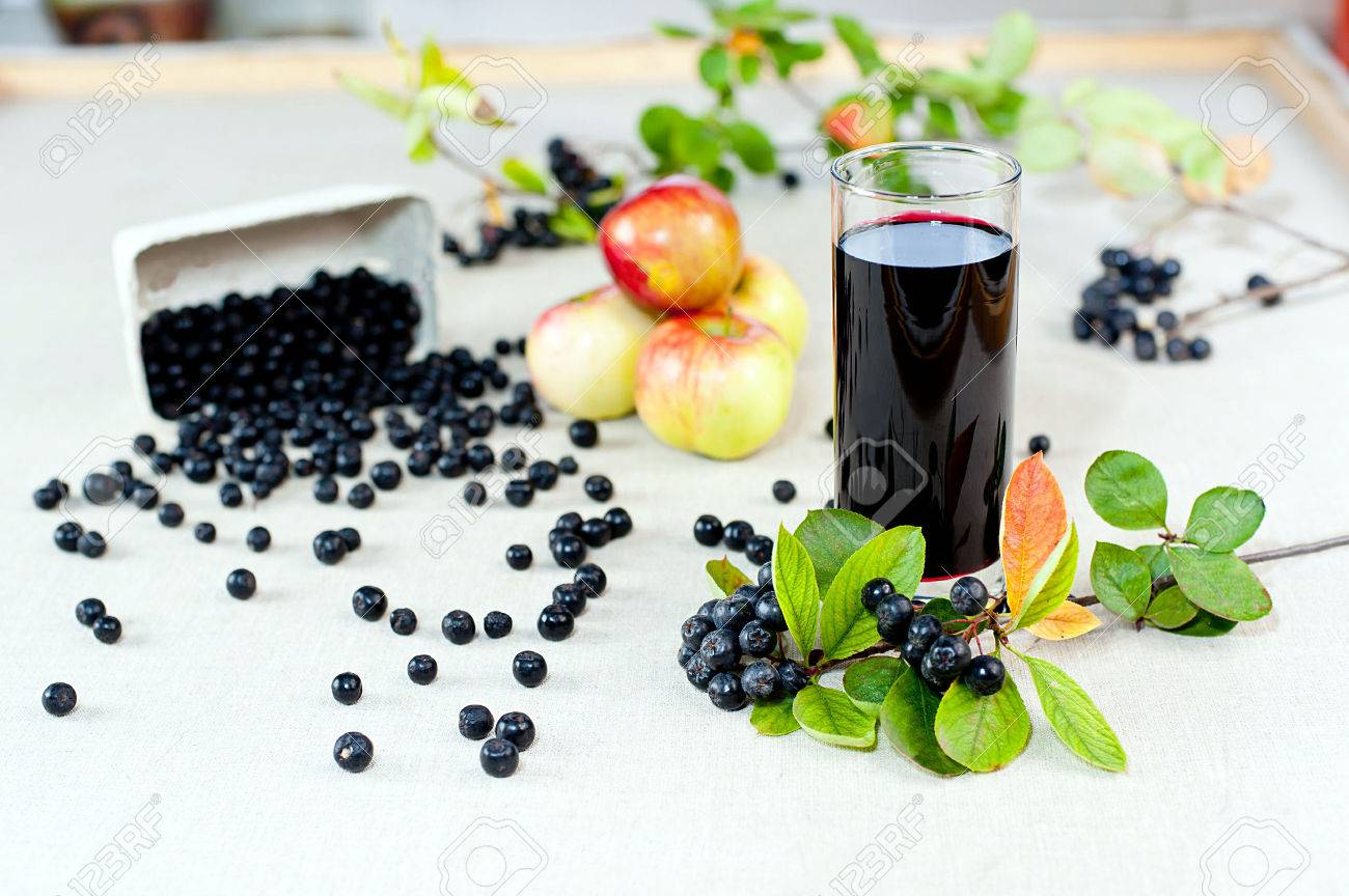 Aronia - Black Choke berry fruits and juice Separated pile of fruit, twig with leaves, and bunch - 22257401
