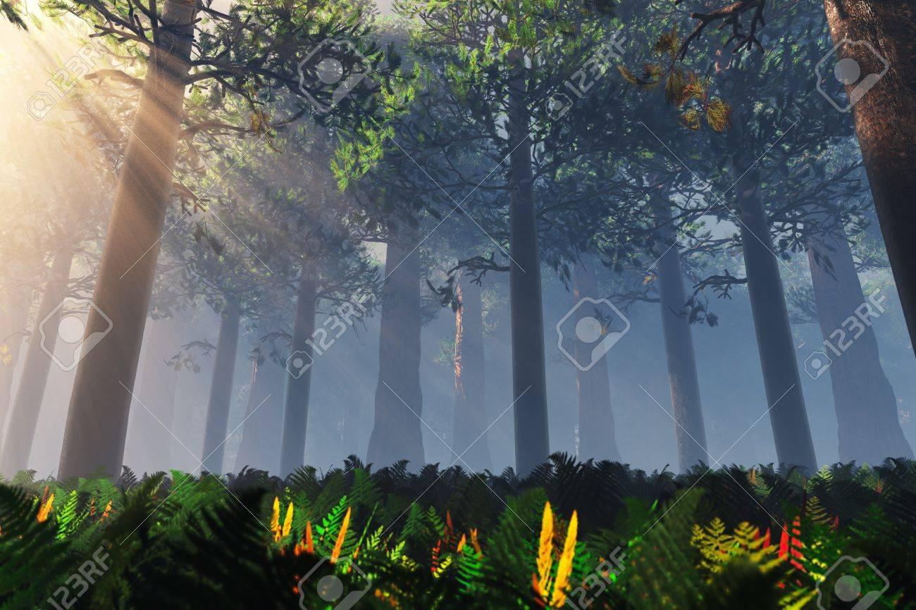 Deep Forest 3D render Stock Photo - 17168603