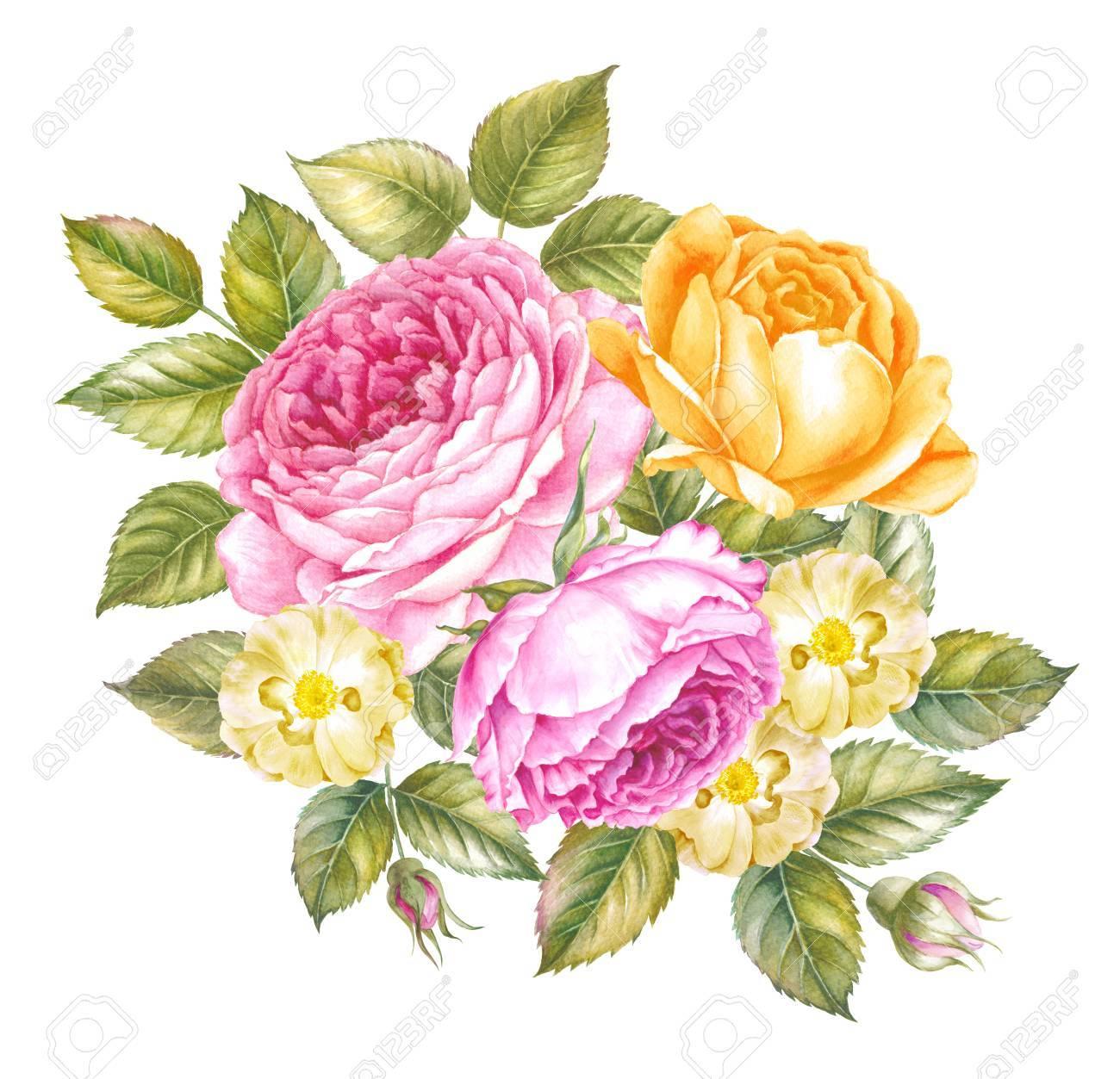 Blumenstrauß Aus Rosen. Botanische Illustration Des ... - Einladungskarten Hochzeit Rosen