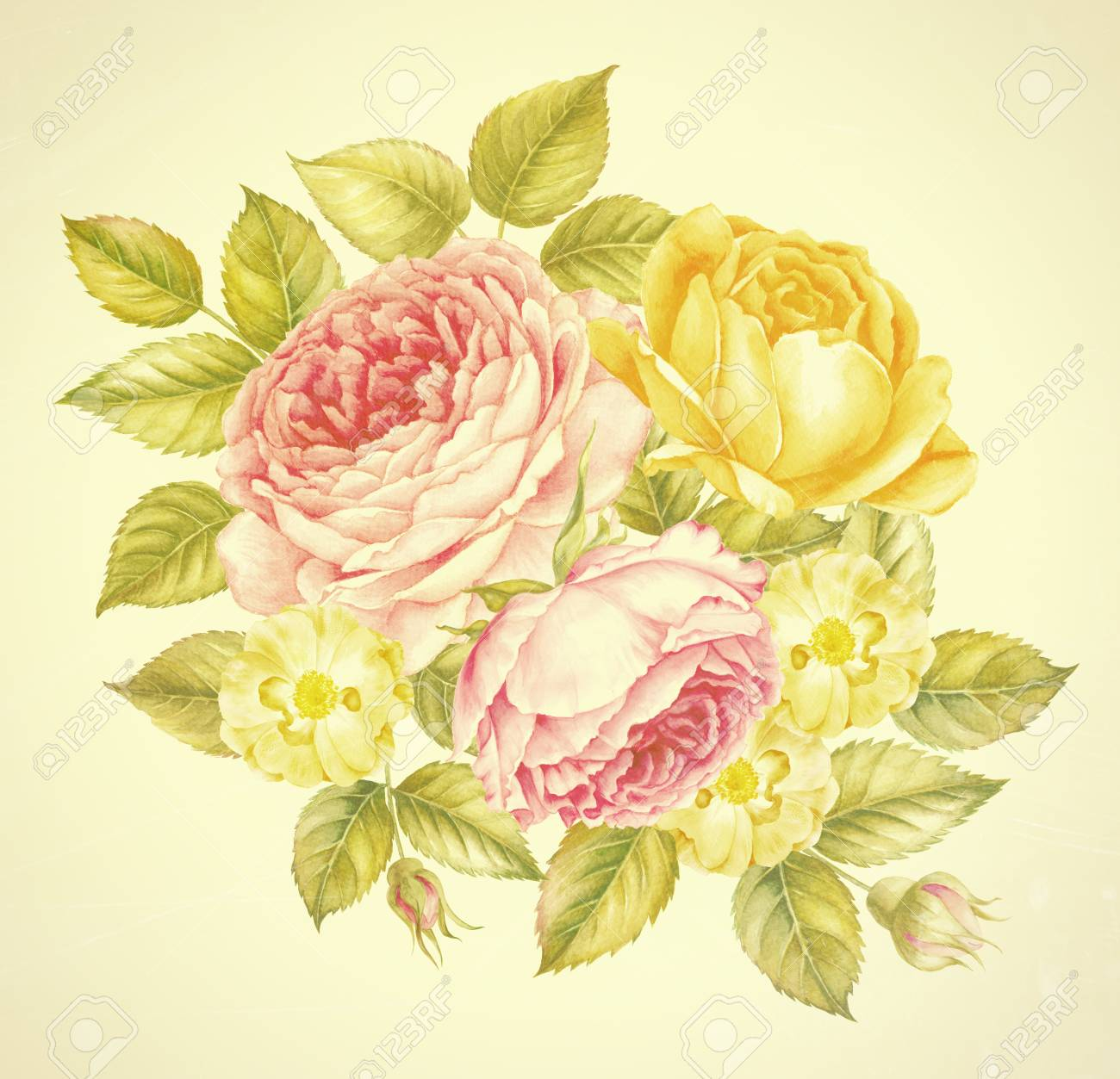Ramo De Flores De Rosas Ilustración Botánica De La Acuarela Del Vintage Tarjeta De Invitación Para La Boda Cumpleaños Y Otras Vacaciones Y Fondo De