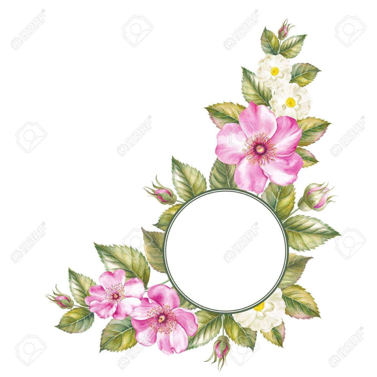 Elegant Card With Circle Frame For Your Text And Summer Blooming ...