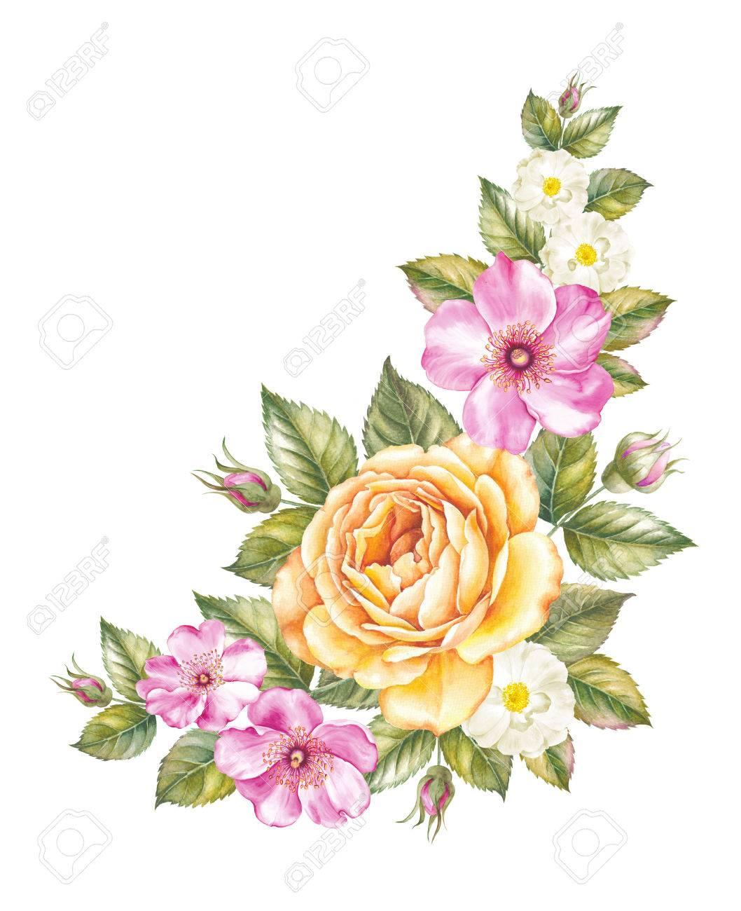 rosen vorlage