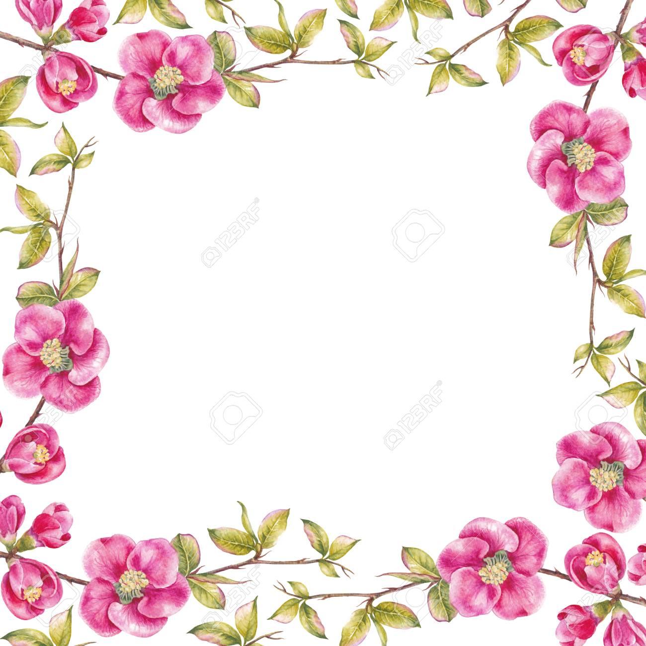 Marco Rectangular De Flores De Cerezo Rosa Plantilla De Tarjeta De Invitación Para Bodas Cumpleaños U Otras Vacaciones Ilustración Botánica