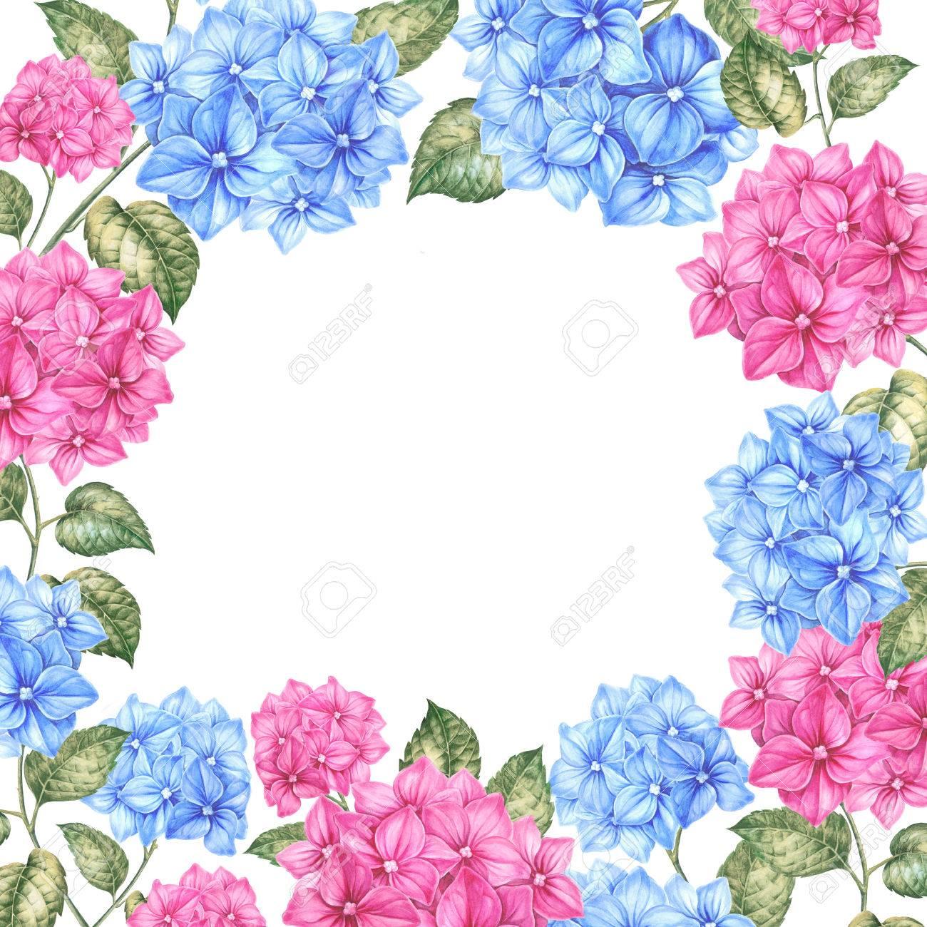 Marcos De Flores Para Fotos. Simple Resultado De Imagem Para Png ...