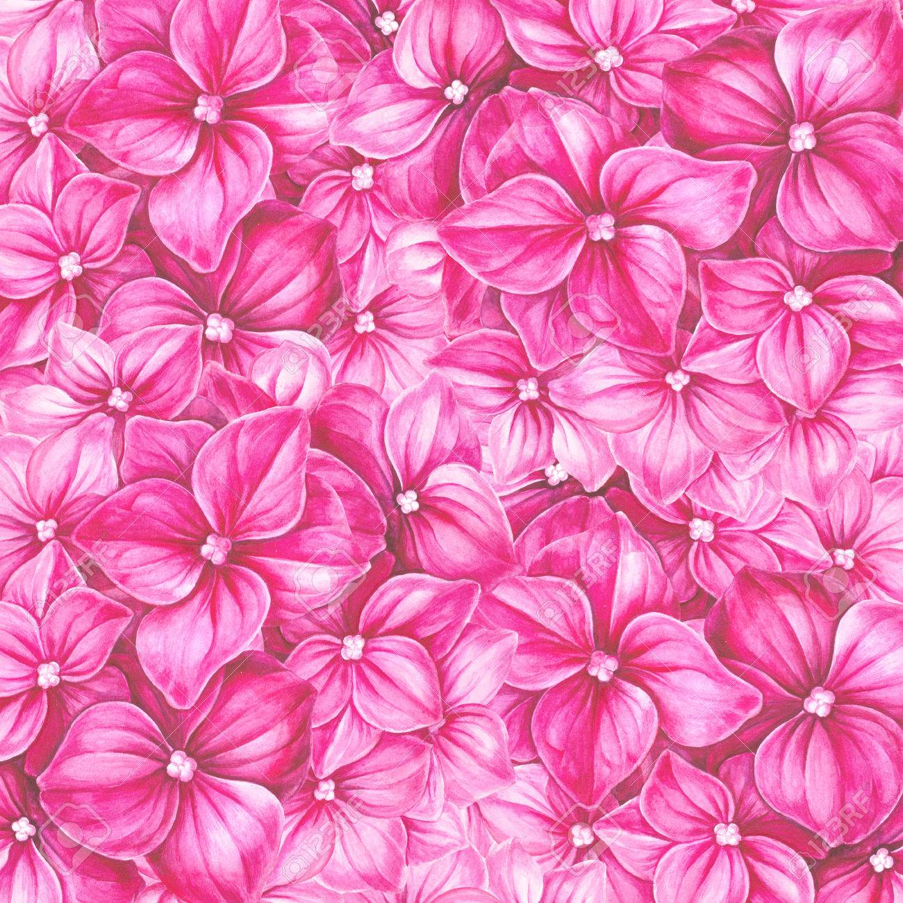 Blooming Hydrangea Flower Watercolor Illustration Cute Pink