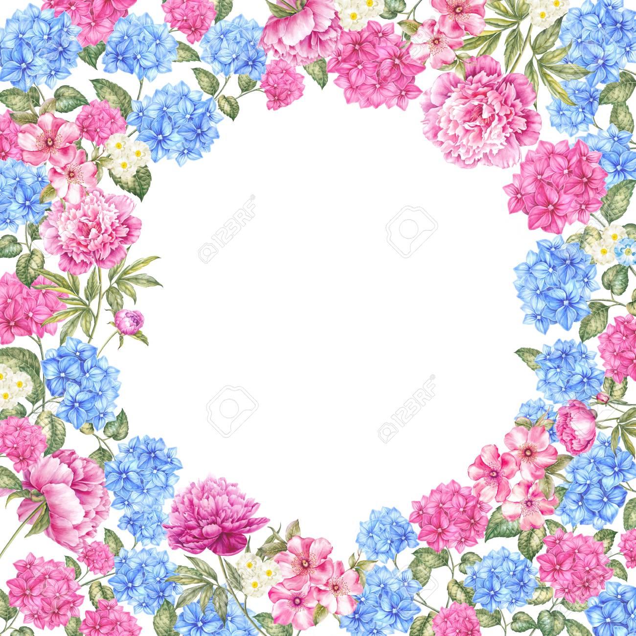 Marco De Flores De Color Hortensia Plantilla De La Frontera De La - Color-hortensia