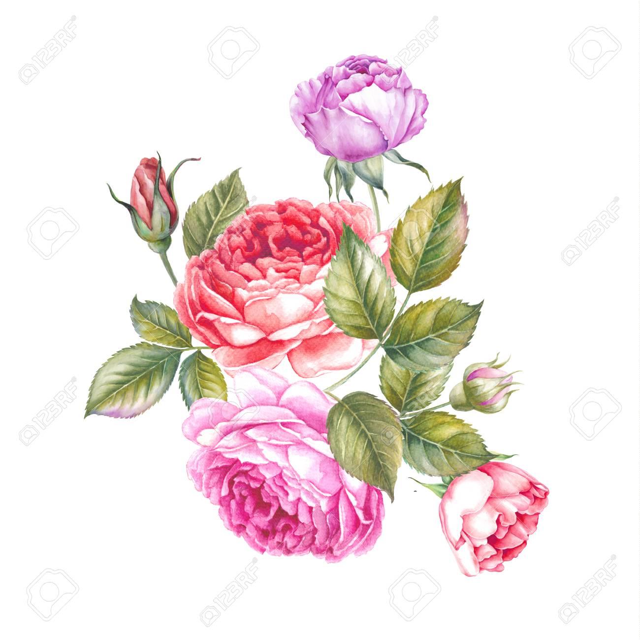 Bouquet Of Rose Flowers Vintage Watercolor Botanical Illustration