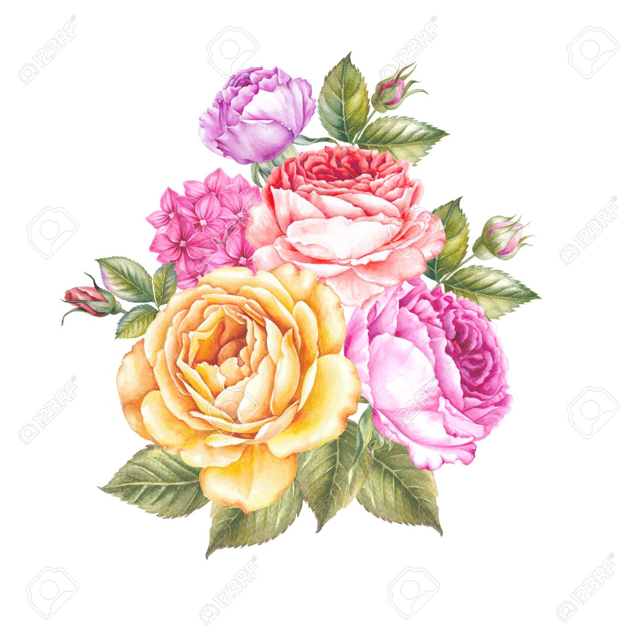 Vintage Garland Of Blooming Roses Watercolor Botanical Illustration