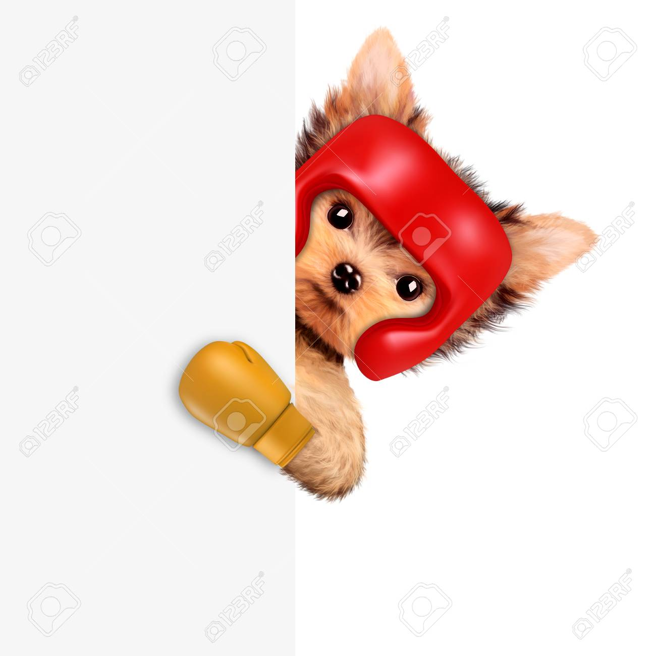 Ssr3a48d12 Spst 048vdc 3a Dc Solid State Relay Circuit Diagram Squirrel Wearing Boxing Gloves Wiring Diagrams Funny Dog Helmet And Stock Photo Picture Rh 123rf Com Female