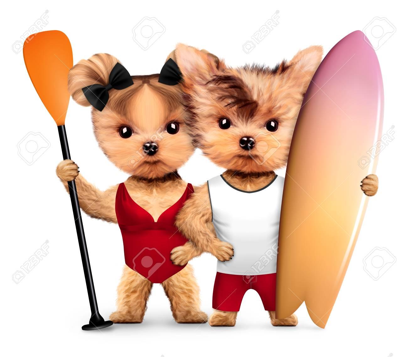 水着を身に着けている動物は、サーフィンやパドルを保持します