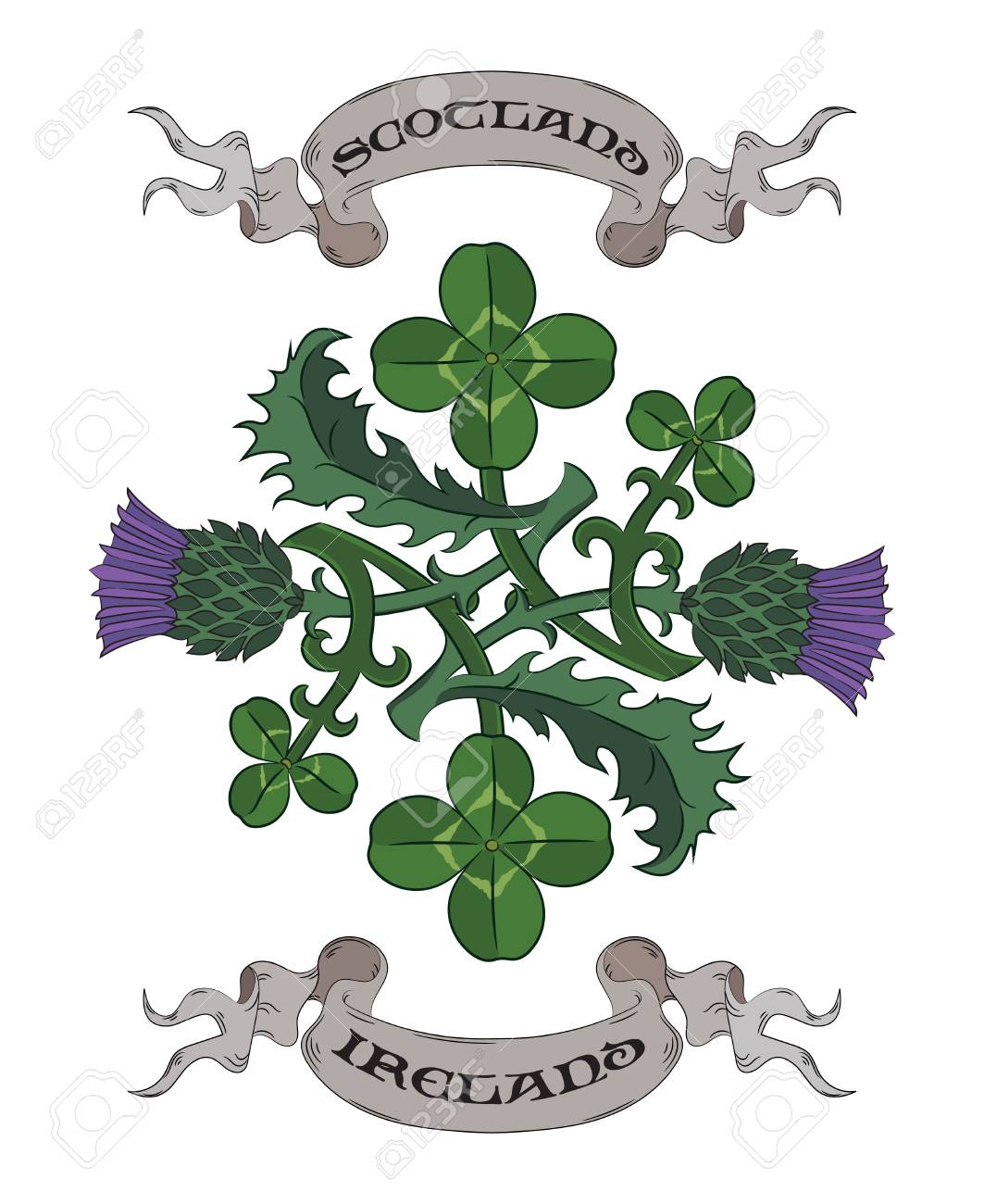 Thistle and Clover. The symbols of Ireland and Scotland vector illustration - 86100898