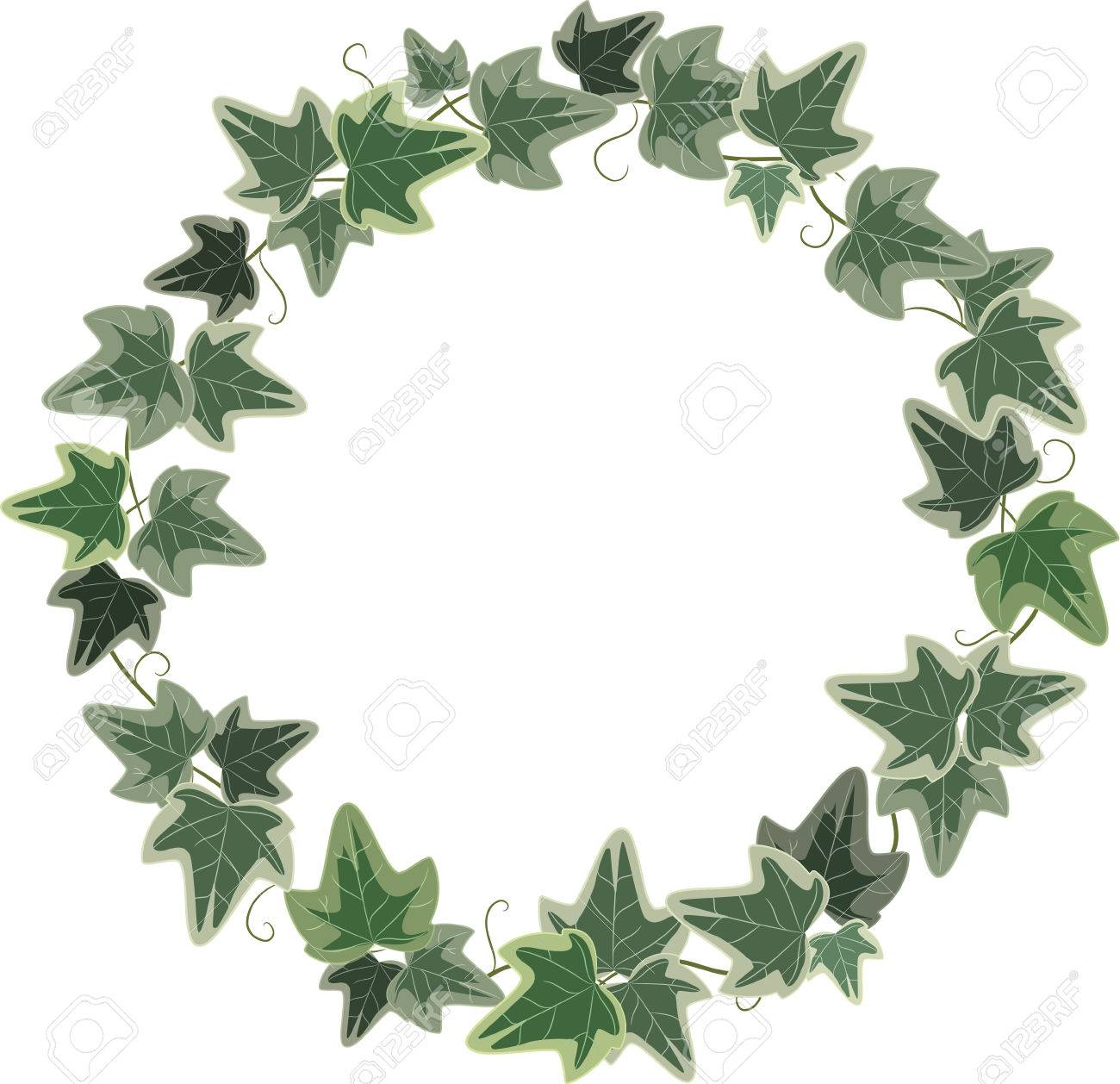 A Wreath Of Ivy Isolated On White, Vector Illustration, Eps-10 ...