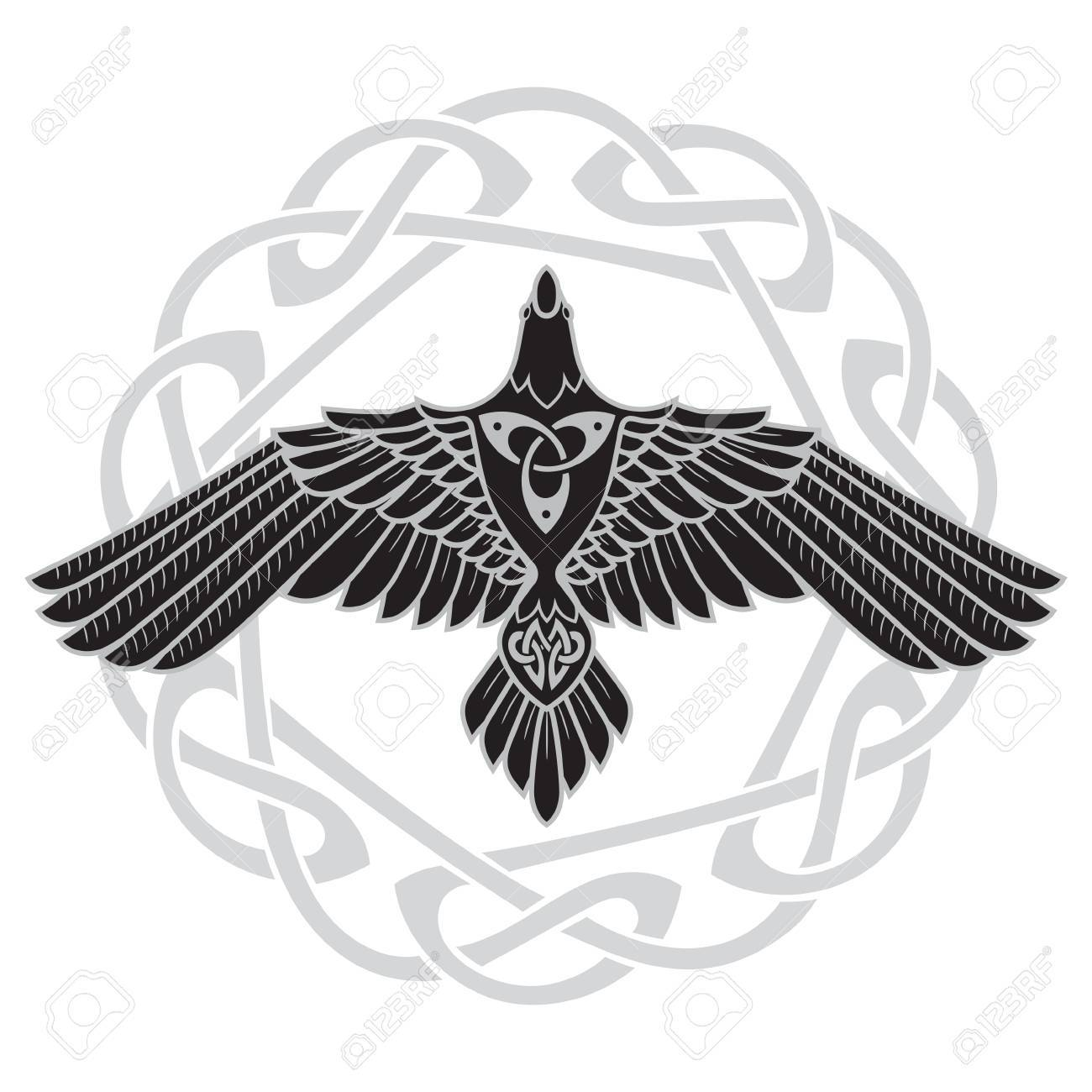 The raven of odin in norse celtic style royalty free cliparts the raven of odin in norse celtic style stock vector 86737481 biocorpaavc