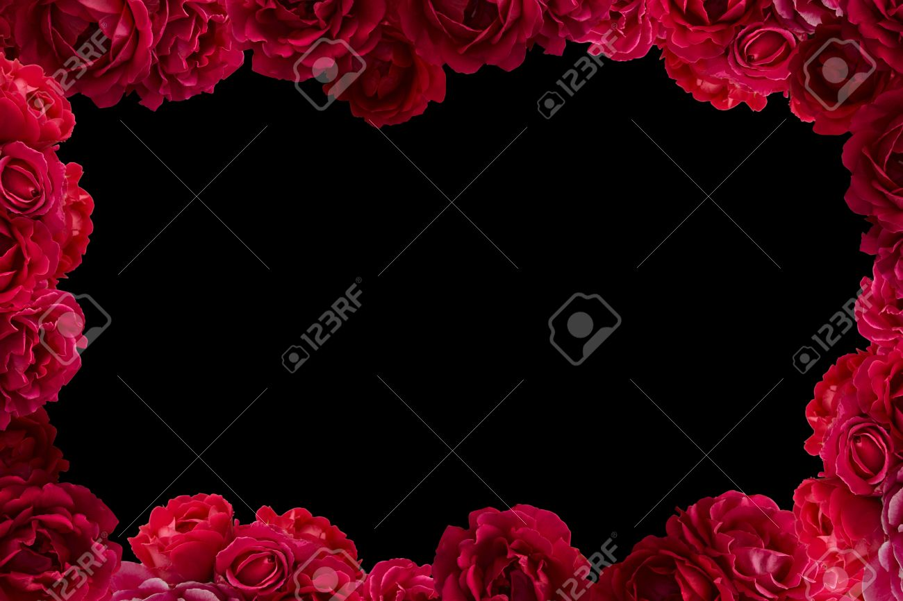Frame With Bush Of Red Rose Flowers Background Isolated On Black Stock Photo Picture And Royalty Free Image Image 41746648