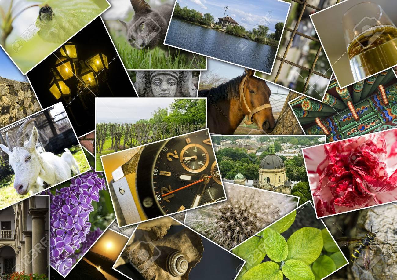Collage Mosaico Con Imágenes De Diferentes Lugares, Paisajes, Flores ...