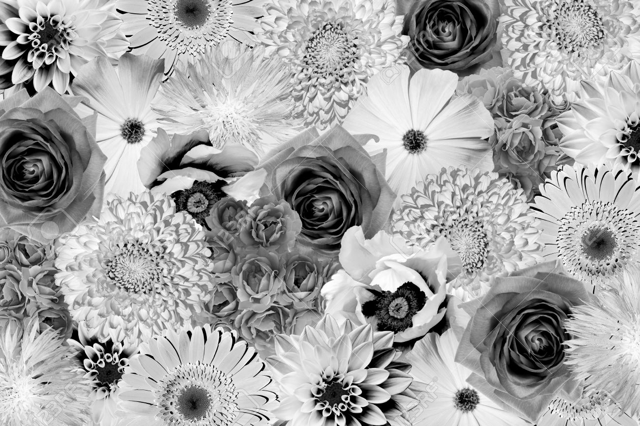 Stock photo vintage black and white flowers collage background
