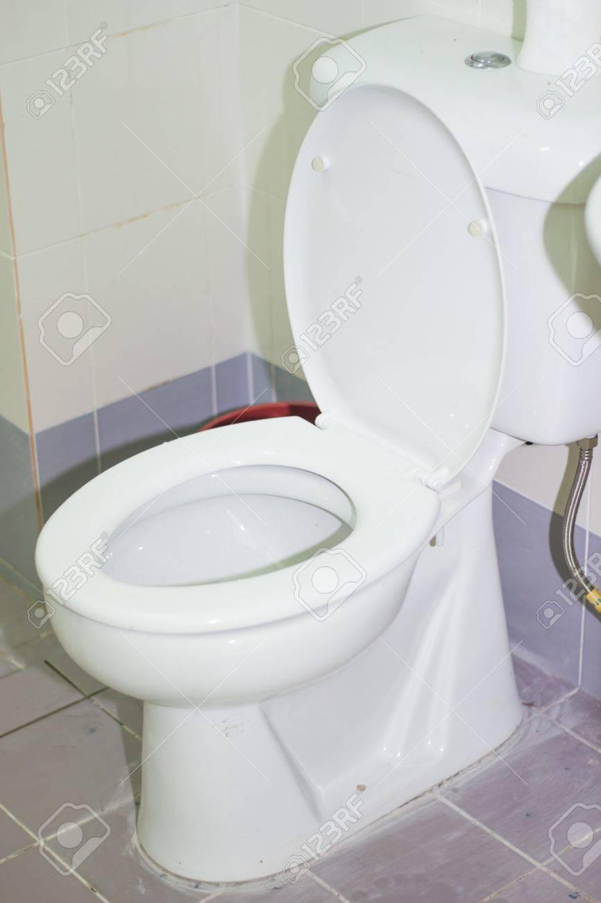 Toilet Bowl Stock Photo - 21947705