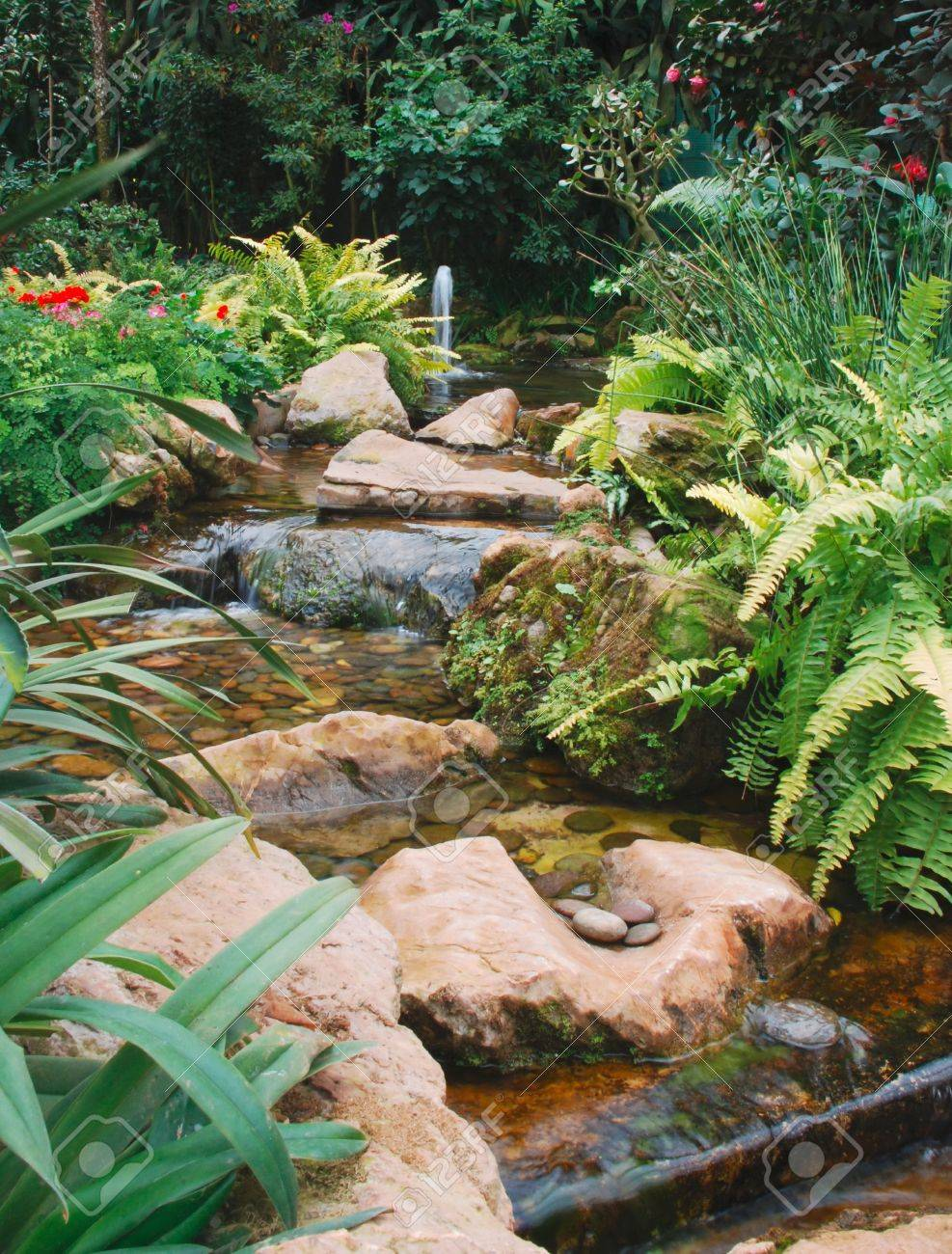 Tropical Rainforest Garden With Waterfall Stock Photo Picture And