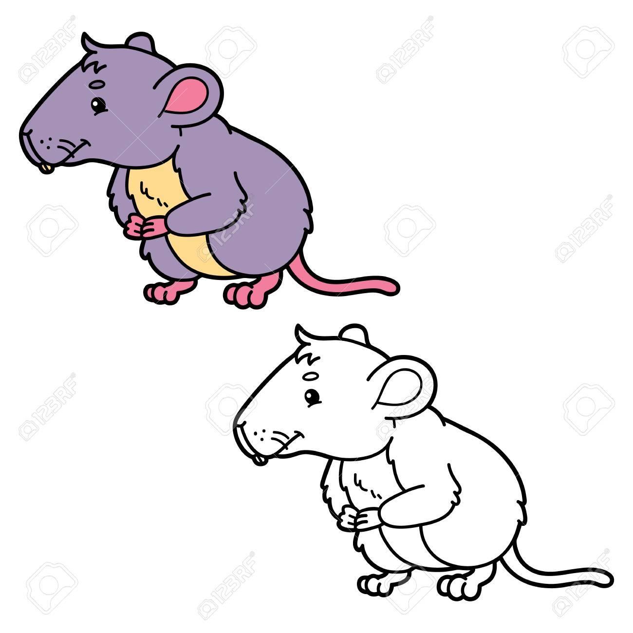 Vole Divertido. La Página De Ilustraciones Para Colorear De Ratón De ...