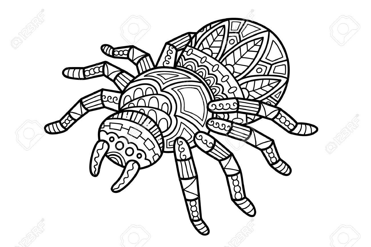 Araña Linda. Ilustración Del Vector De La Araña Zentangle Adornado ...