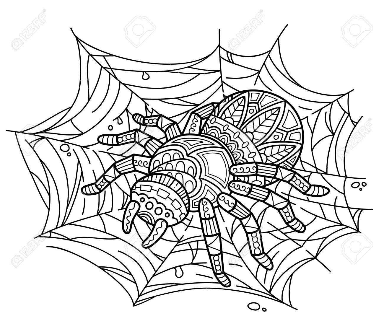 Cute Spider On Web Vector Illustration Of Ornate Zentangle For Children Or