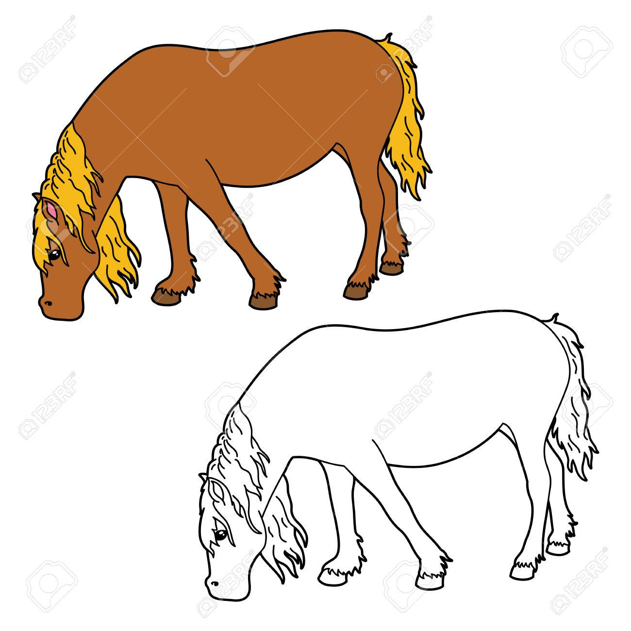 Horse Coloring Page Vector Educational Of Happy Cartoon For Children